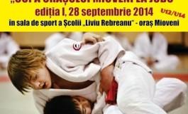 La Mioveni - Cupa oraşului la judo