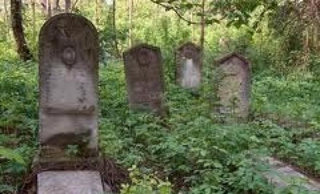 Ce suflet! Si-a abandonat bebeluşul în cimitir
