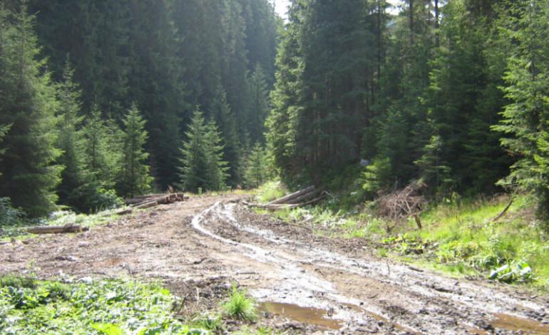Argeșul a primit bani pentru drumuri județene și comunale și pentru terenurile agricole calamitate