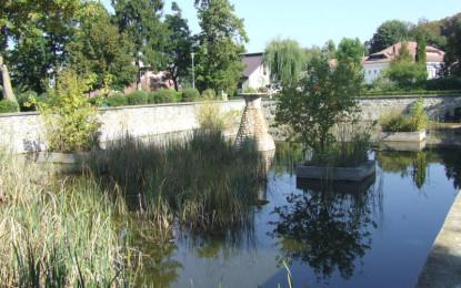 Milioane de euro investite în parcuri cu buruieni