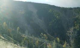 Bomba retrocedărilor de pădure din zona Muscel a fost amorsată!