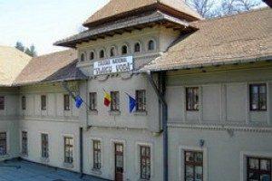 Proiecte în an centenar la CNVV, Curtea de Argeș