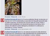 Kaufland s-a autosesizat în cazul ciupercilor stricate scoţându-le de la vânzare