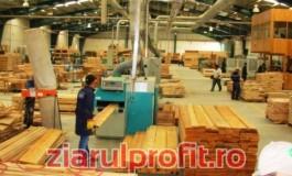 Vin turcii la Pitesti ! Vor sa investeasca in industria pusa pe butuci de şmecherii pădurilor
