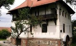 Arta decorativa si pictura la Casa Norocea