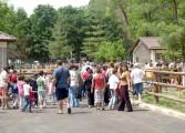 Primăria Piteşti are program special de 1 iunie - Copiii merg gratis la Gradina Zoologica