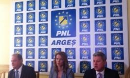 Preşedintele PNL,  argeşeanca Alina Gorghiu nu a adus în discuţie nici una dintre problemele judeţului. Deşi liberalii argeşeni i-au înaintat o listă , unde se regăsesc Autostrada Piteşti-Sibiu şi Arpechim, Gorghiu a evitat subiectul