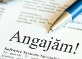 AJOFM Argeș oferă peste 100 locuri de muncă pentru câmpulungeni