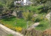 Adio idei de proiect pentru amenajarea malurilor Râului Târgului cu nisip de la Mamaia