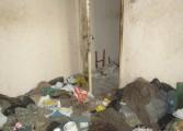 Galerie foto horror!  O locuinţă a primăriei Câmpulung transformată în bombă ecologică