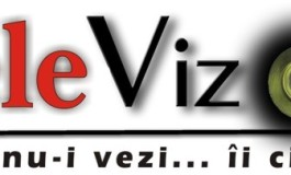 Tele VIZOR -  Argeş TV a schimbat stǎpânul, Curierul s-a ... rǎtǎcit în eter