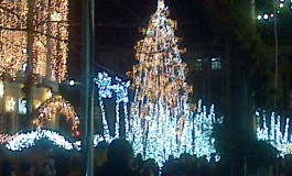 Pomul de Crǎciun – motiv de cadouri pentru copiii din toate comunele