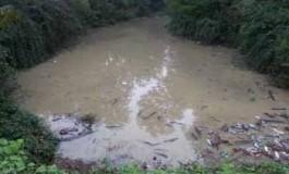 S-a imputit lacul de langa casa primarului - Vecinii lui Diaconu sunt disperati