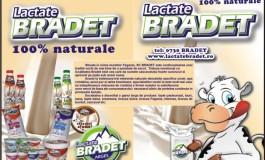 Uluitor! Ce spune patronul fabricii de lactate Bradet despre produsele cu E-coli