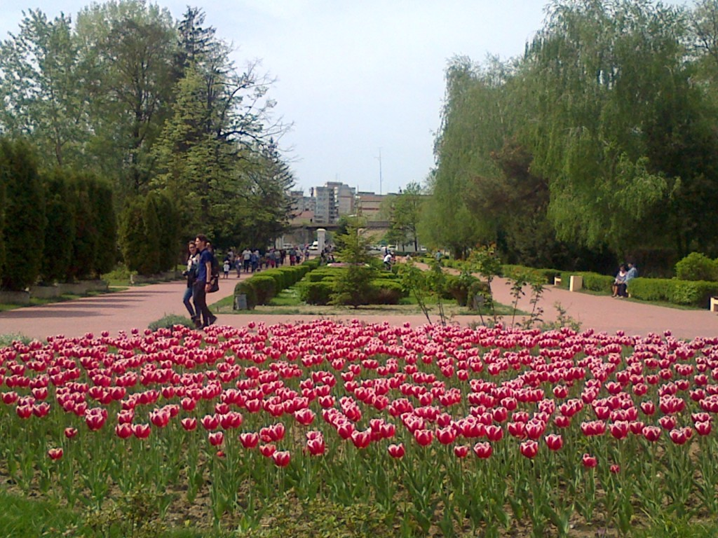 Parc Strand
