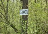 Pădurea Trivale – un domeniu public de vânzare