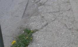 POZ(N)A ZILEI - Minune la Curtea de Argeş - Din asfalt cresc pǎpǎdii şi ciuperci