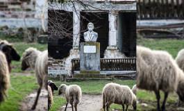 CEL MAI VECHI SPITAL DIN ROMÂNIA ÎNCHIRIAT DE PSD ARGES PE 12 EURO UNUI CRESCĂTOR DE OVINE
