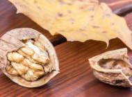 Beneficiile consumului de omega-3