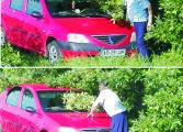 Poliţia stă cu radarul la pândă in boscheţi  TU CE PARERE AI ? Are dreptate deputatul Rădulescu sau poliţistul Godină