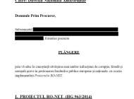 CUTREMUR ! Afacerea RO-NET a ajuns la DNA ! Dragnea, Ponta, Ghita si Bostan, in plangerea penala de 332 pagini  DOCUMENT