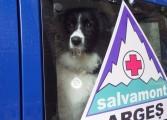 Cinci posturi de salvatori montani  vor fi scoase la concurs