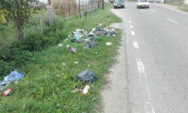 GALERIE FOTO! Drum judetean din Arges, transformat in groapa de gunoi