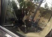 Atac armat asupra unui deputat de Arges - S-au tras 7 gloante