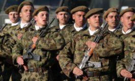 DE MAXIM INTERES ! Armata română recrutează noi voluntari