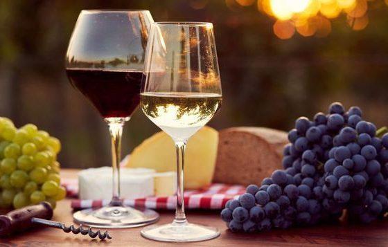 Producţia de vin mondială este în declin considerabil. Care este cauza