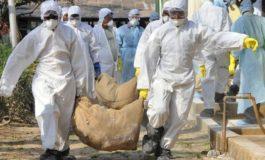 Alerta in Arges din cauza gripei aviare ! Au inceput verificarile