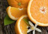 Top beneficii ale consumului de portocale