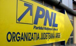 Nimeni nu s-a înscris în cursa pentru şefia PNL Argeş