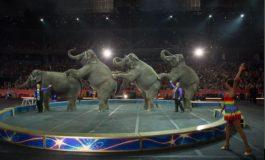 """Un celebru circ cu o tradiţie de 146 de ani, care a creat spectacolele de circ modern, se închide: """"A fost o decizie extrem de dificilă"""""""