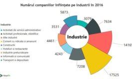 ANALIZA - Care sunt domeniile in care sa investesti in 2017