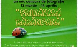 INEDIT! Concurs de fotografii cu peisaje din Bǎbana