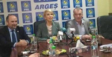 """Raluca Turcan : """"PNL a dezamagit in Arges - PSD a fost ales cu oameni condamnati"""""""