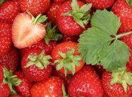 10 trucuri pentru a păstra prospeţimea fructelor şi legumelor mai mult timp