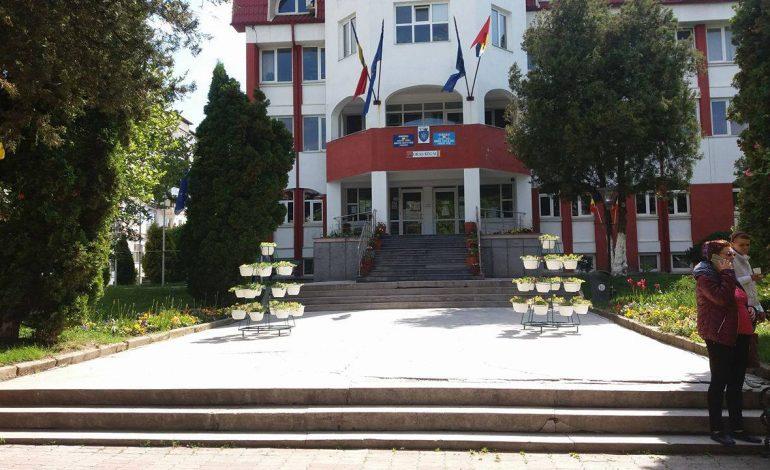 Sute de flori in stative pe Bulevardul Basarabilor – Argesenii prefera insa sa se repare gropile din asfalt