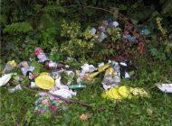 Argeseni nesimtiti- Au lasat dezastru in zona de picnic Faget