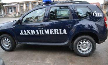 Din cauza CAILOR SALBATICI - Jandarmii s-au RASTURNAT cu masina in rau