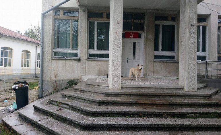 SCANDALOS ! Uite in ce hal arata cel mai penibil sediu PSD din Romania