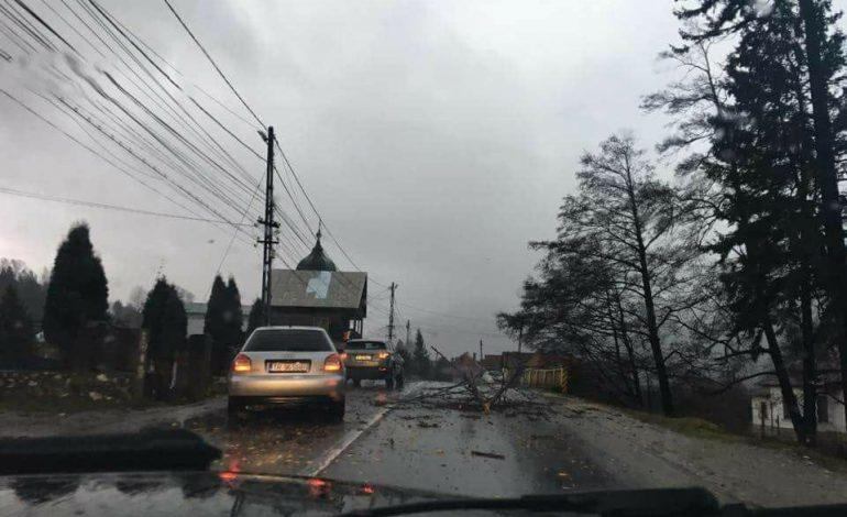 Furtună la Câmpulung – Grindină și crengi pe carosabil