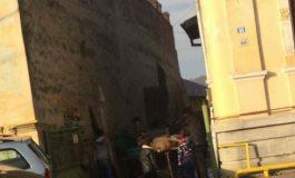 La Curtea de Argeș sacrificarea porcilor se face pe străzi din centru sau pe spațiile verzi