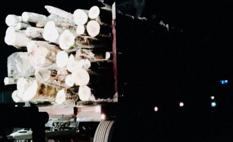 ACUM! Camion cu LEMN FURAT depistat de jandarmi la Arefu