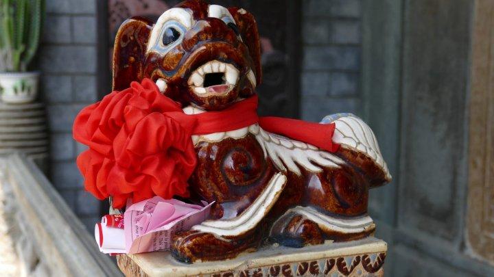 Zodiac CHINEZESC 2018: Iata cu ce surprize vine Anul Câinelui de Pamânt pentru zodii
