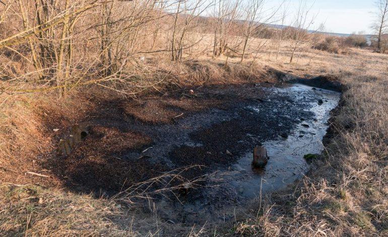 """EXCLUSIV ! VIDEO Poluare cu petrol in Arges – Lacul Valcele """"botezat"""" de OMV"""