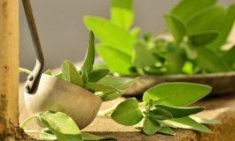 Ceai verde: Cele 20 beneficii uluitoare asupra sanatatii tale