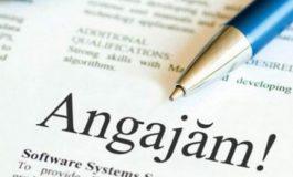 ADP Pitești organizează concurs de angajare pentru ocuparea unui post contractual vacant de contabil şef