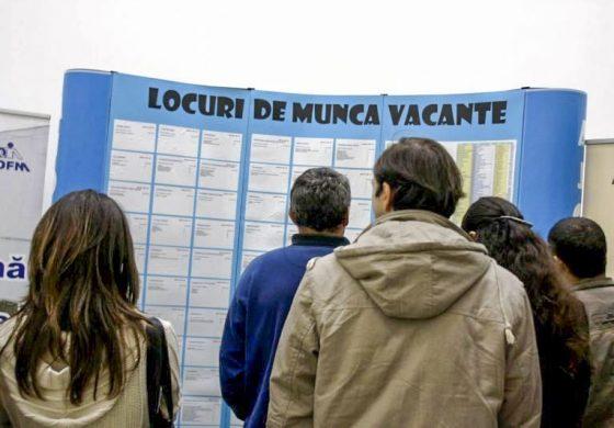 SUTE DE JOB-URI DISPONIBILE - Se deschide bursa locurilor de munca pentru absolventi